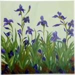 (5) Irises 5